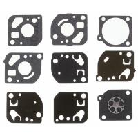 DIAPHRAGM & GASKET KIT